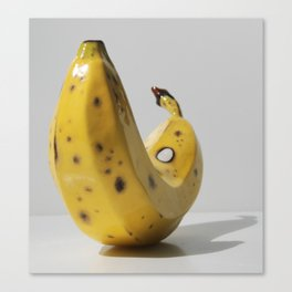 Middle Aged Banana Canvas Print