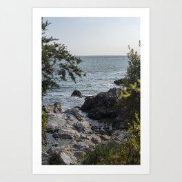 Island in the Summer Art Print