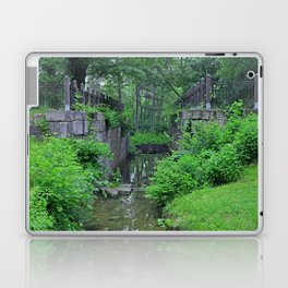 Rites of Spring Laptop & iPad Skin