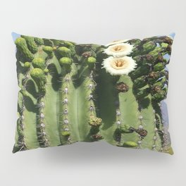 Beautiful Saguaro Blossoms Pillow Sham