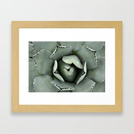 Shelter Framed Art Print