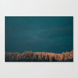 Forest XX Canvas Print
