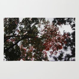 Art Drops in the Air (Japan) Rug