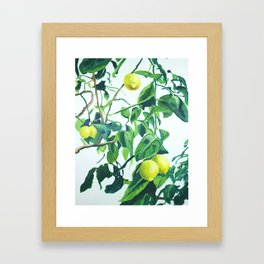 Foliage I / Lemon Tree Framed Art Print