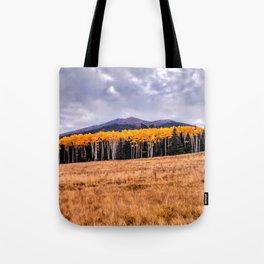 Aspens North of Flagstaff Arizona - Humphreys Peak Tote Bag