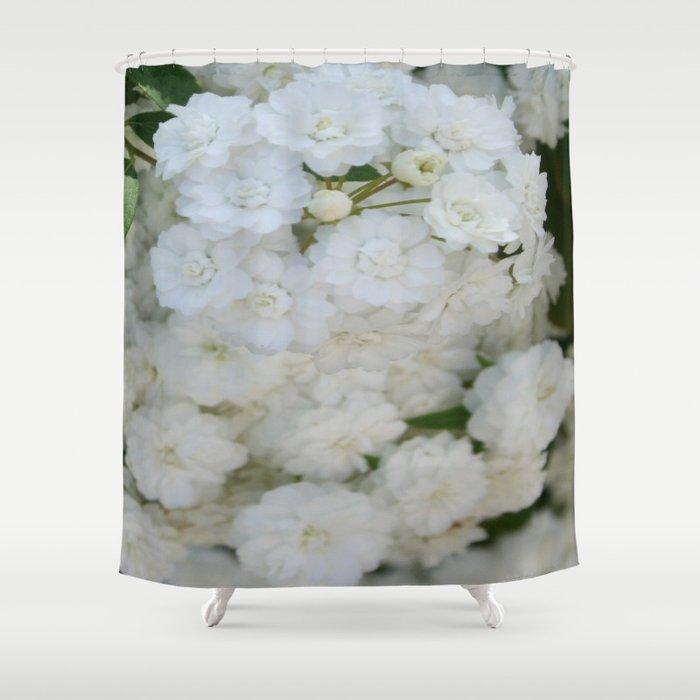 Deutzia Pure and Simple Shower Curtain