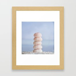 Pink sea cairn ocean urchins Framed Art Print