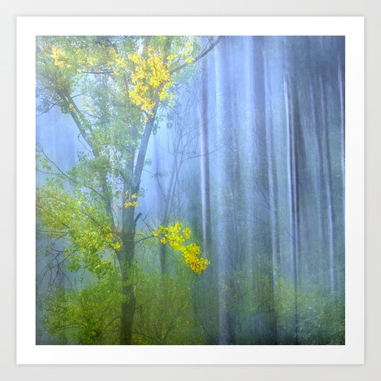 In the blue forest Art Print
