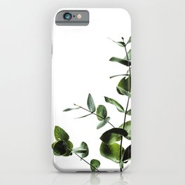 Eucalyptus Plant Wall Art iPhone Case