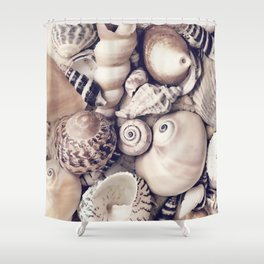 Vintage  Sea Shell Collection Coastal Style Shower Curtain