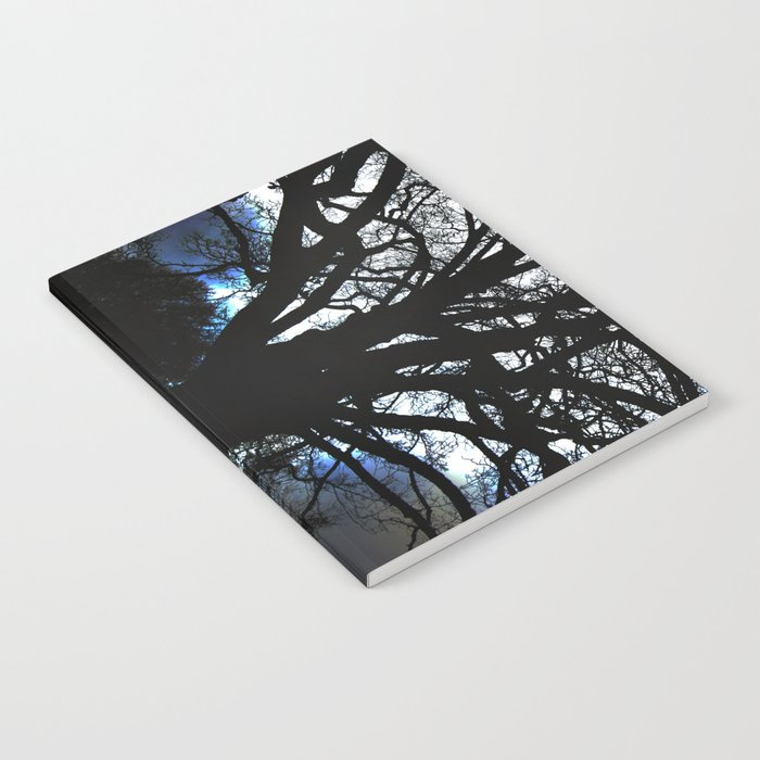 Treeflection VI Notebook