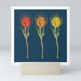 Pincushion Protea Flowers Mini Art Print
