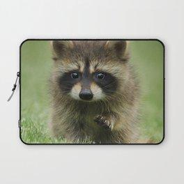 Baby Raccoon Laptop Sleeve
