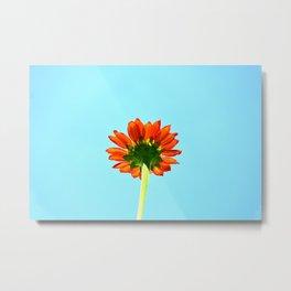 Bloom From Below Metal Print