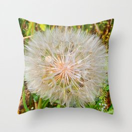 Seed Dispersement Device Throw Pillow