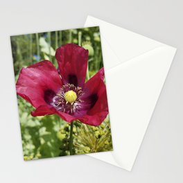 Pretty Purple Poppy Flower Stationery Cards