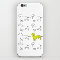daschund iPhone & iPod Skins featuring Weenie Collective by WhyitsmeDesign