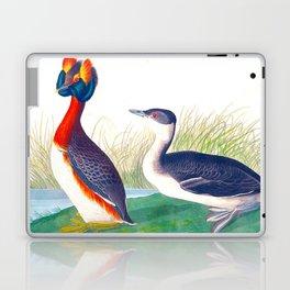 Horned Grebe Duck Laptop & iPad Skin