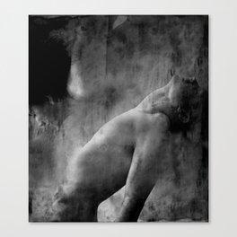 A night so still Canvas Print