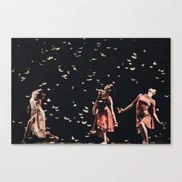 Dancing finale Canvas Print