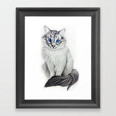 Ojos Azul Framed Art Print