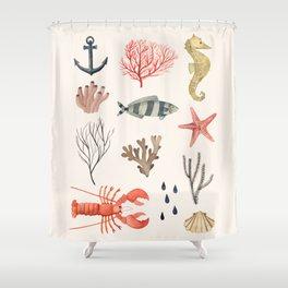Sealife Schoolchart Shower Curtain