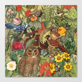 birds flowers and insects Canvas Print