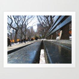 Central Park, New York City, U.S.A Art Print