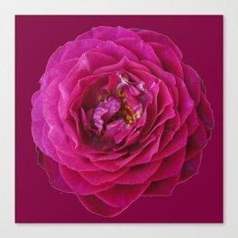 """""""BLUE YONDER"""" MAGENTA ROSE  MAGENTA COLOR ART Canvas Print"""