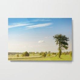 Rural grassland trees view Metal Print