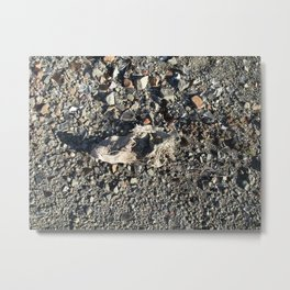 Forgotten Shoe Metal Print