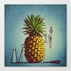 The Pineapple Experiment Canvas Print