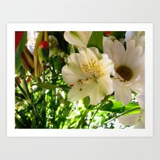 New Bouquet  Art Print