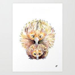 Enigmatic Echidnas Art Print