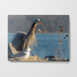 Happy Heron Metal Print