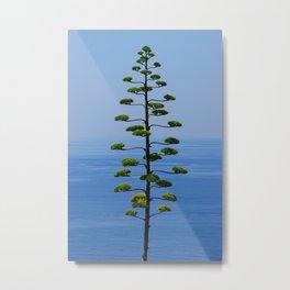 Pine Tree Before the Sea Metal Print