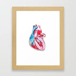 heart section Framed Art Print