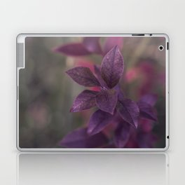 Purple Autumn Leaves Laptop & iPad Skin
