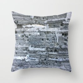 Fort wall St. Augustine Throw Pillow