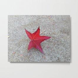 Sidewalk Star Metal Print