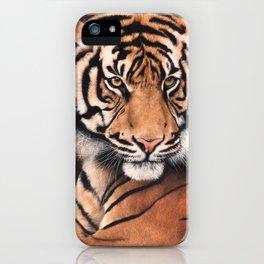 Satu Kuat iPhone Case