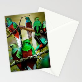 Quetzals Stationery Cards