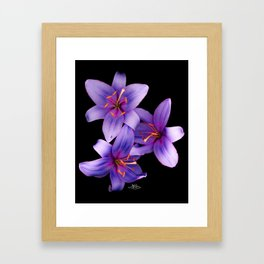 Beautiful Blue Ant Lilies, Flowers Scanography Framed Art Print