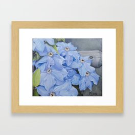 Blue Clematis Flowers on Knotted Fence Post Framed Art Print