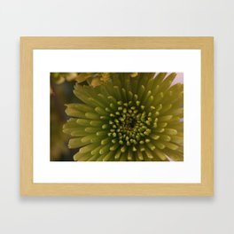 Christmas series 3 Framed Art Print