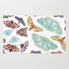 Nature Illustration of Moths Rug