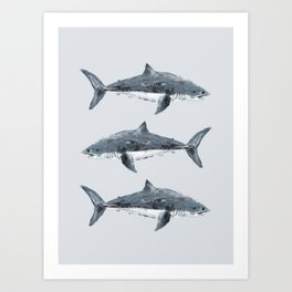 Great White Shark Painting Art Print
