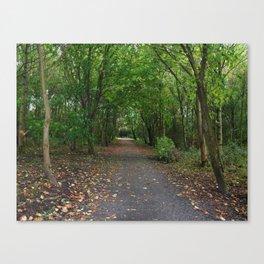 Lochore Meadows Woods - Fife, Scotland Canvas Print