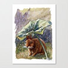 Funny Rabbits - In The Rain 551 Canvas Print