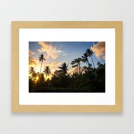 Palm tree at sunset in Moorea island Framed Art Print